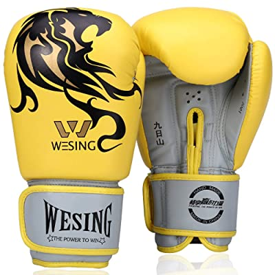 Wesing Pro Grade Boxing Gloves for Women and Me...