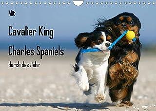 Mit Cavalier King Charles Spaniels durch das Jahr (Wandkalender 2022 DIN A4 quer): Cavalier King Charles Spaniel in allen ...