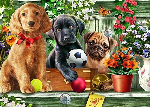 The Poster Corp Adrian Chesterman – Shelf Puppies (Variant 2) Kunstdruck (45,72 x 22,86 cm)