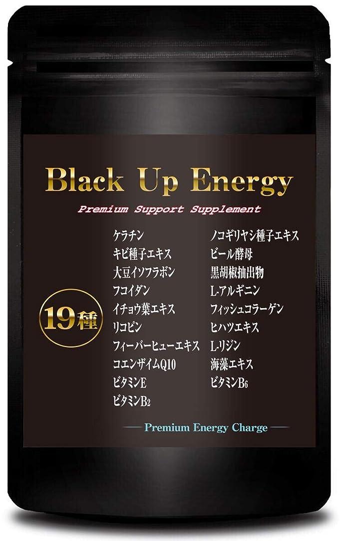 醜い起きているスーツBlack Up Energy ノコギリヤシ ケラチン サプリメント 厳選19素材 30日分