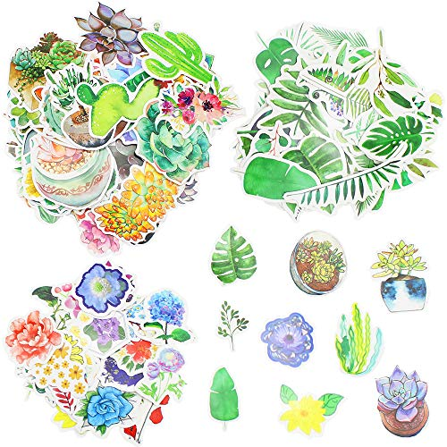 DXLing 173 Sheets Scrapbooking Stickers Watercolor Floral Stickers Succulents Tropical Plants Style Note Decoration Stickers Ephemera Scrapbooking Easy Self-Adhesive Cute Sticker for DIY Card Making