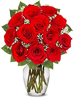 Flowers - One Dozen Long Stemmed Red Roses (Free Vase Included)