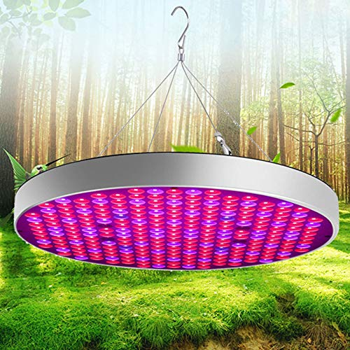 QWESHTU LED Grow Light Full Spectrum Panel Zimmerpflanzen Anbauleuchten Pflanzenlampe Geeignet Für Hydrokultur Gewächshäuser Grow Tent Plant Factory Blumengemüse (50W)