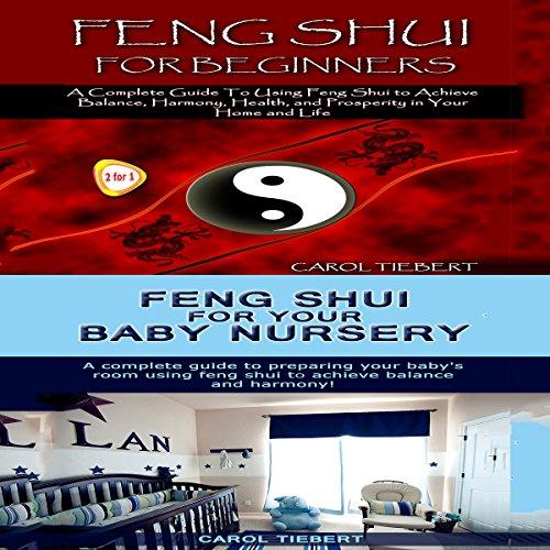 Feng Shui audiobook cover art