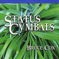 Status Cymbals