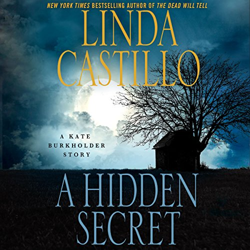 A Hidden Secret audiobook cover art