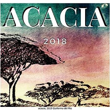 Acacia B (contribución)