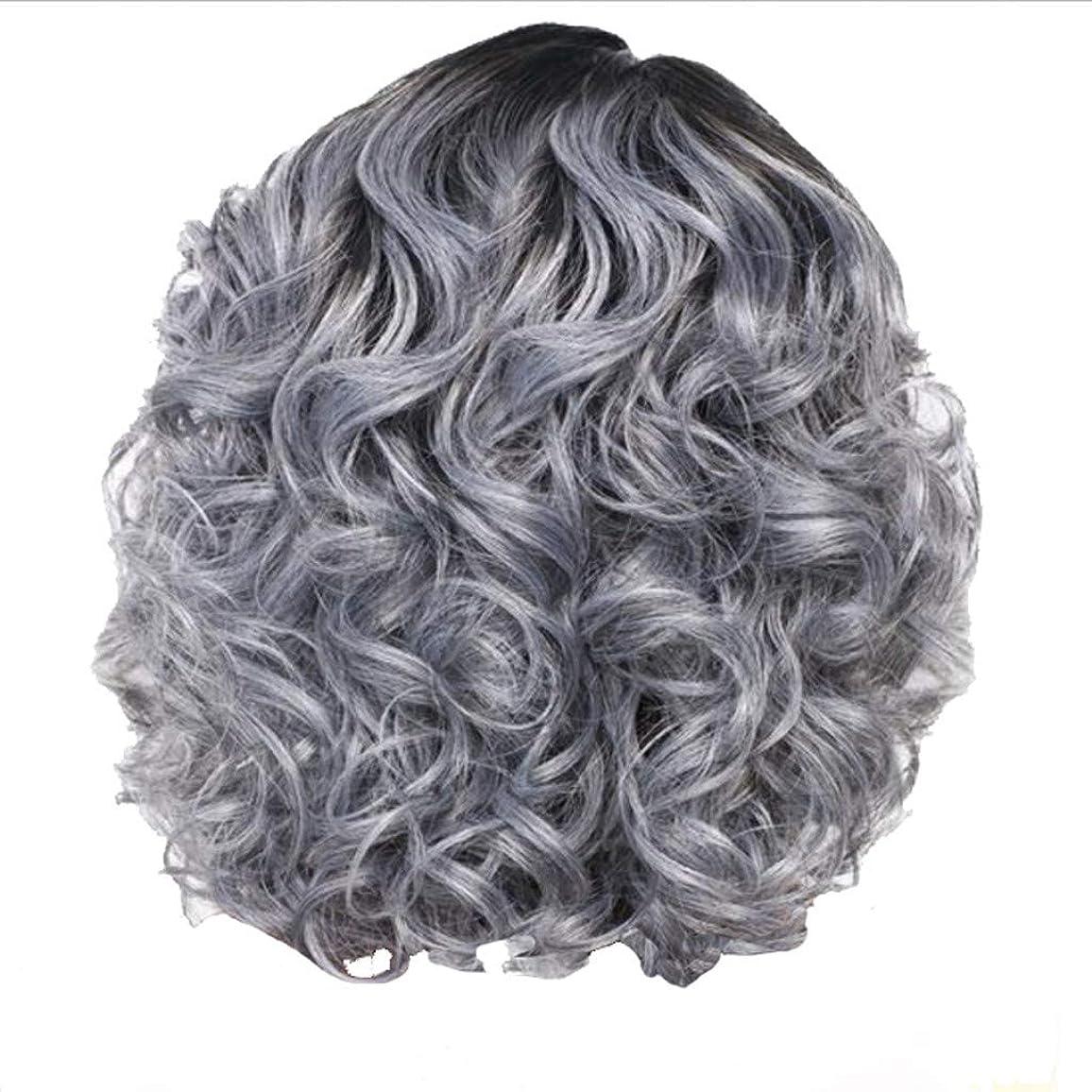 裏切り者細部体系的にかつら女性の短い巻き毛シルバーグレーレトロ巻き毛ネット30 cm