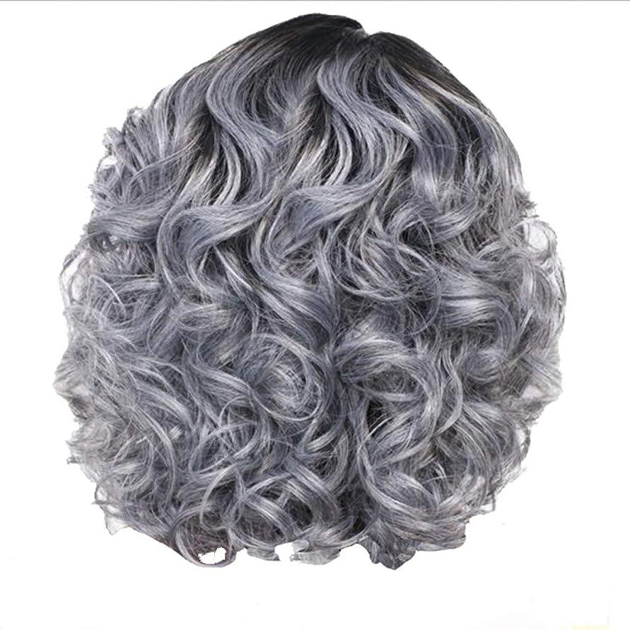 死すべきカルシウム頼るかつら女性の短い巻き毛シルバーグレーレトロ巻き毛ネット30 cm