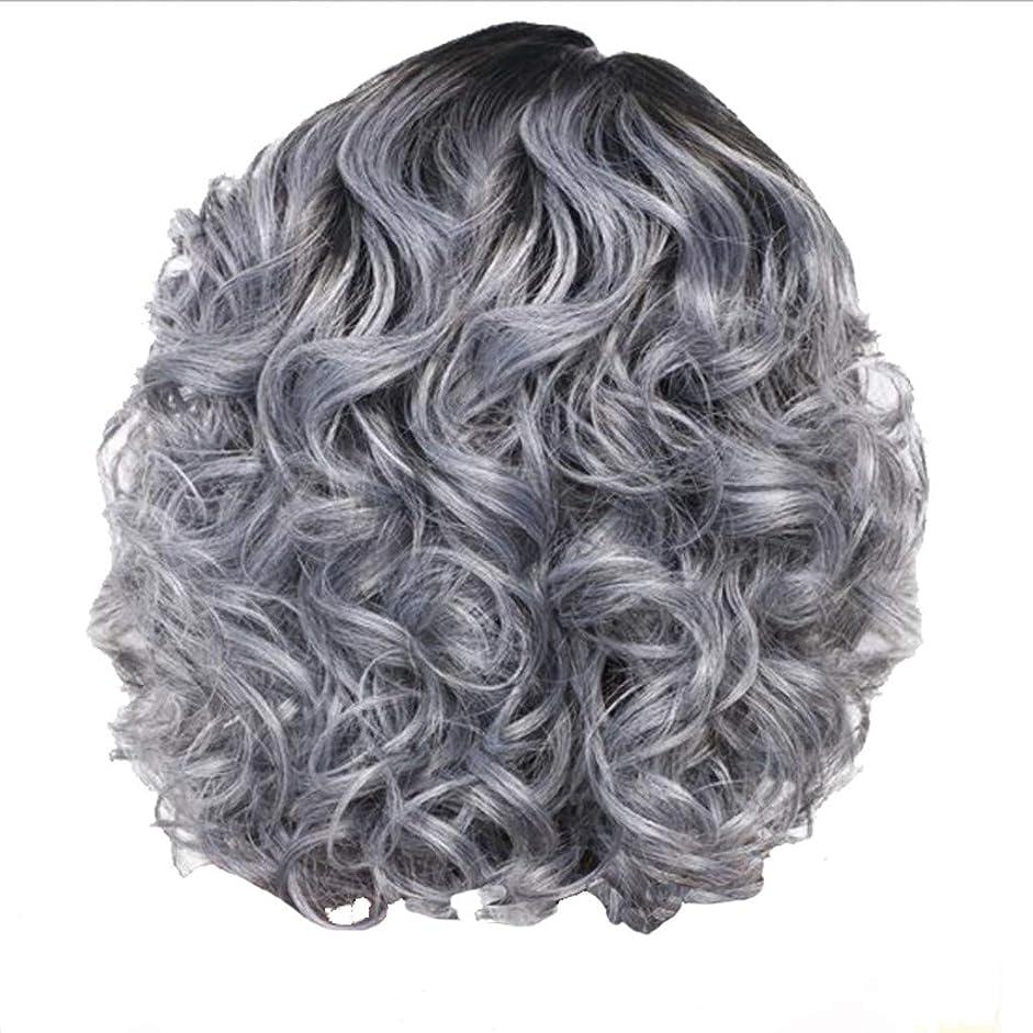 リマ製作ご近所かつら女性の短い巻き毛シルバーグレーレトロ巻き毛ネット30 cm