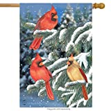 Briarwood Lane Winter Cardinal Trio House Flag Snowy Scene 28' x 40'