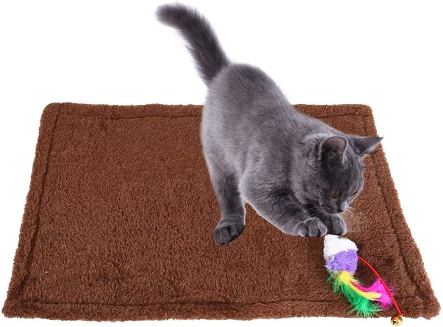 Cat Claw Mat,Cat Grinding Claw Toy Rug with Fish & Bell Toy,Pet Training Interactive Toy