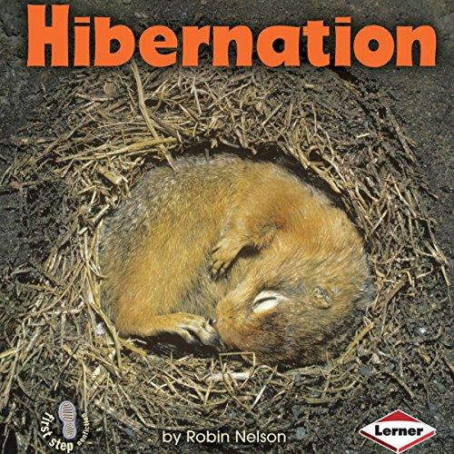Hibernation audiobook cover art
