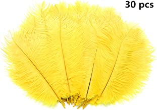 Hollosport 30 PCS 10-12inch Yellow Ostrich Feathers,Natural Craft Feathers for Festival,DIY,Party,Wedding,Dream Catcher,Home Decoration (Yellow)