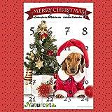 Naturcota Calendario de Adviento Perro