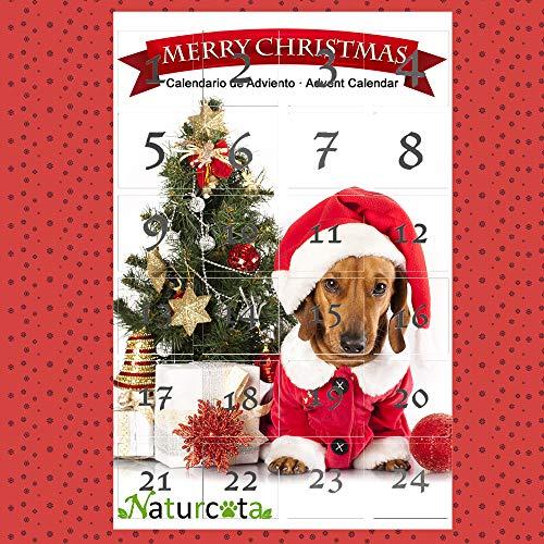 Naturcota Calendario de Adviento Perro 🔥