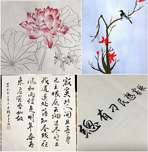 """Easyou Sumi Paper Ripe Xuan Paper Sumi Paper for Chinese Japaness Painting in Meticulous Style Claborate-Style Painting 46cmx70cm(18.1""""x27.6""""); 20sheets/Pack"""