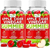 (2-Pack) Apple Cider Vinegar Gummies with The Mother for Metabolism Support & Detox - Acv Gummies for Appetite, Gummy Alternative to Capsules, Non-GMO, Amazing Taste, 120 Vegan Gummies