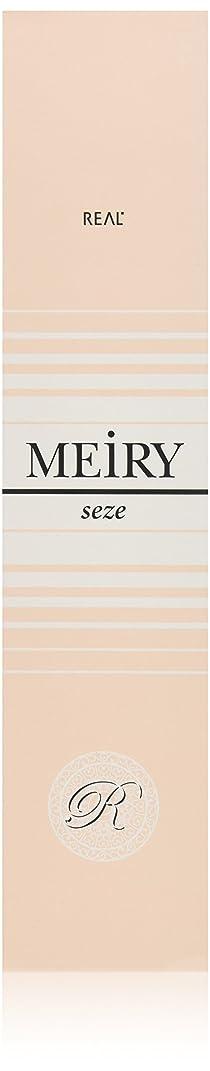スタウト発行イブメイリー セゼ(MEiRY seze) ヘアカラー 1剤 90g 9WB