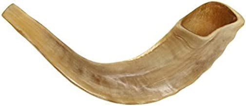 "KOSHER ODORLESS POLISHED SHOFAR | Genuine Natural Rams Horn | Smooth Mouthpiece for Easy Blowing | Includes Velvet like Drawstring Bag and Shofar Blowing Guide (10""-12"")"