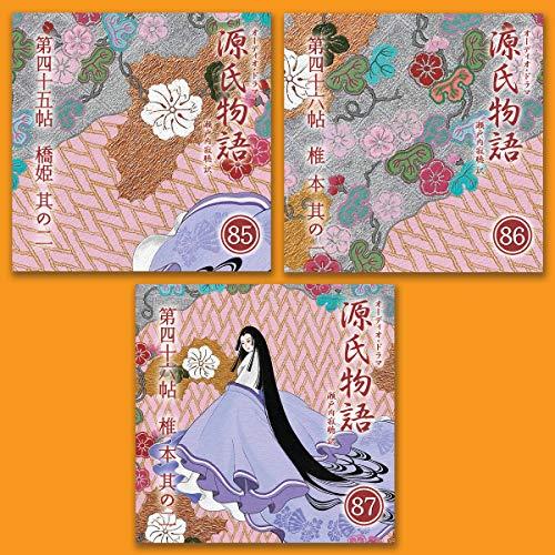 『源氏物語 瀬戸内寂聴 訳 3本セット(二十九)』のカバーアート