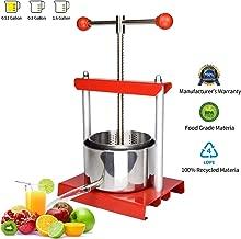 mini fruit press