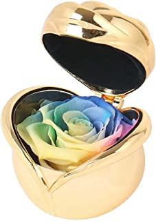 Angel Lover Mothers Day Flowers,Preserved Flower Rose,Never Withered Roses,Upscale Immortal Flowers,Gifts Women,Her,Girls,Sister, Mother's Day,Valentine's Day,Anniversary,Birthday,Wedding (E.Rainbow)