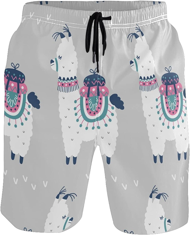 Llama Swim Trunks Men Funny, Fun Swim Trunks Guys Board Shorts,Cartoon Llama Cute AT1662