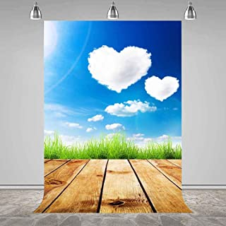 Romantic Heart Shaped Clouds Backdrop for Photography Wooden Boards Blue Sky Green Grass Nature Landscape Background MEETSIOY 5x7ft PMT616