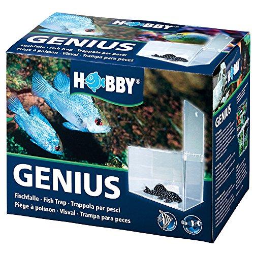 Hobby 61340 Genius, Fischfalle, 21 x 13 x 15 cm