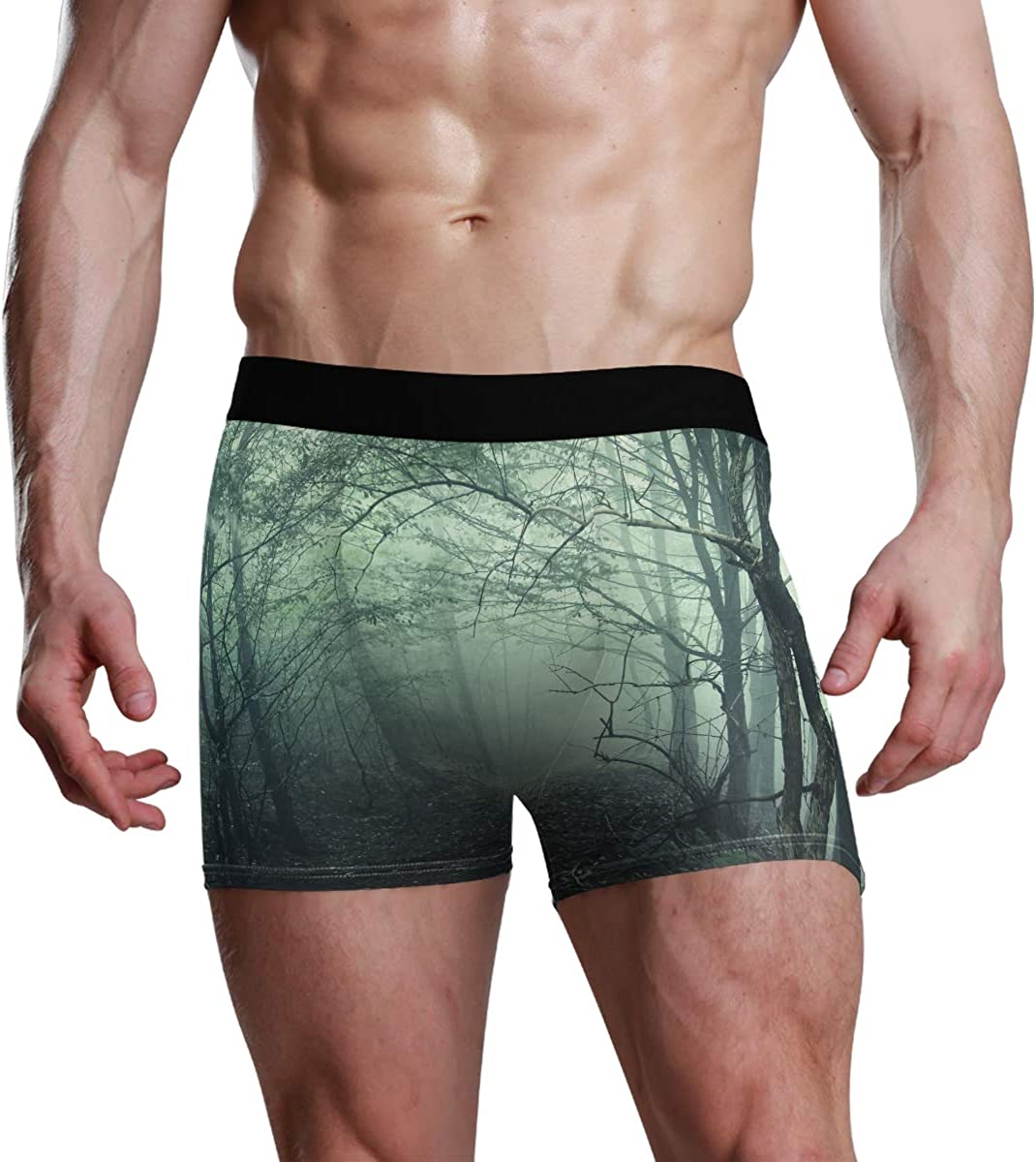 Men's Underwear Fog in The Forest Breathable Boxer Briefs Low Rise Long Leg