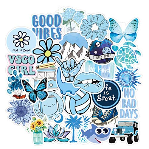 EUYuan Cute VSCO Stickers, 100PCS Cartoon Blue INS Style Vsco Stickers for Laptop,Skateboard, Luggage, Refrigerator, Notebook Laptop,Phone,Water Bottles etc