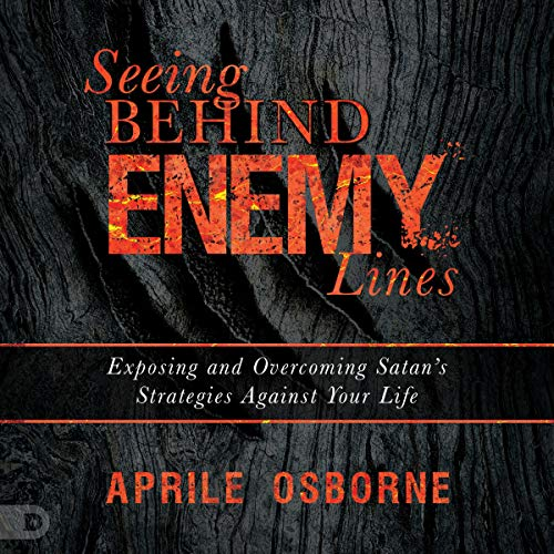 Seeing Behind Enemy Lines Audiobook By Aprile Osborne cover art