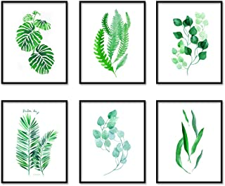 Nediew Botanical Prints Wall Art,Tropical Green Plant Leaf Canvas Paintings Prints for Bathroom,Kitchen ,Living Room,Office Decor Gift,Pastoral Style Pictures,Set of 6,8x10in,Unframe