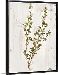 Antique Earthtone Herbs II Black Float Frame Canvas Art, 38