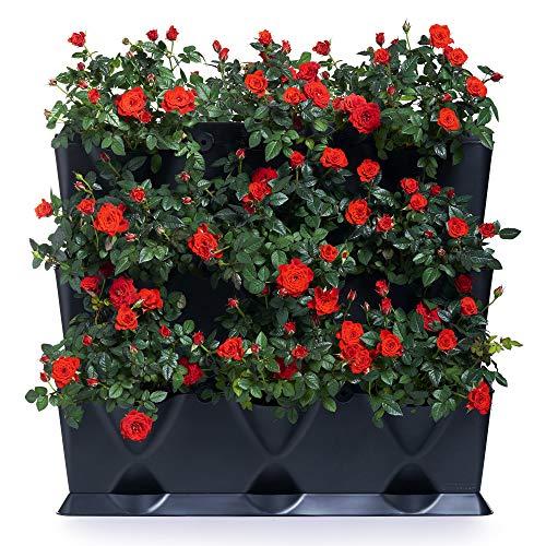 minigarden 1 Juego Vertical para 9 Plantas, Jardín Vertical Modular