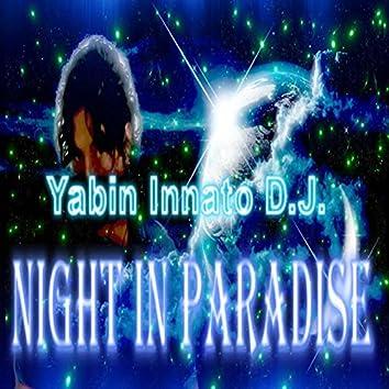 Night in Paradise