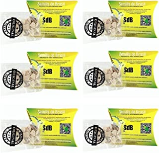 6 Pack Semilla de Brasil Seed 100% Original Authentic Natural 180 Day Supply