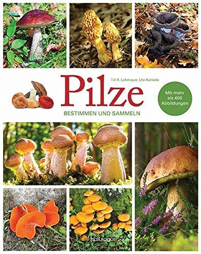 Pilze - Bestimmen und Sammeln: Mit mehr als 400 Abbildungen