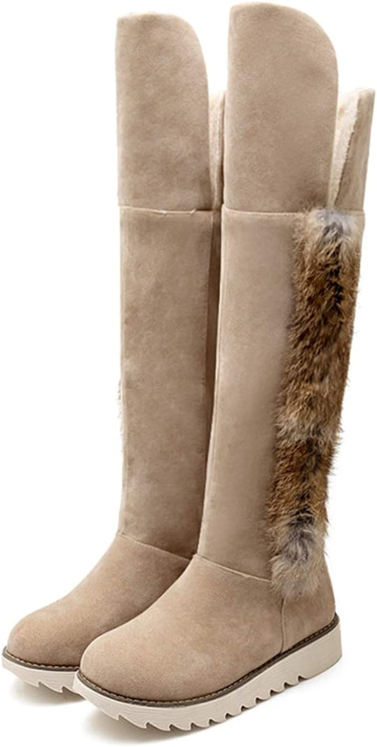 Hot Women Snow Boots Winter Ladies Suede Fashion Flat Heels Women shoes Knee High Boots Brand Fur Warm Snow Boots