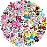 Pegatinas 100 stickers de estilo Vsco, paquete de pegatinas de vinilo para laptop, botella de agua, monopatín, equipaje, teléfono, calcomanía, guitarra, pegatinas para niñas, adultos y adolescentes