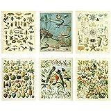 Meishe Art Poster Jahrgang Plakate Drucken Plakatdruck