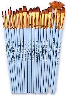 Goolsky 20pcs Draw Paint Brushes Set Kit Artist Paintbrush Multiple Mediums Brushes with Nylon Hair for Artist Acrylic Aqu...
