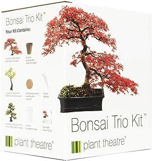 comprar comparacion Plant Theatre - Kit de germinación bonsais