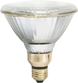 Philips 456533 100W PAR38 4000K Cool White Metal Halide Flood Bulb