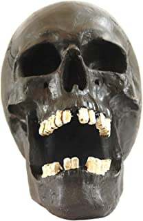 skull open mouth