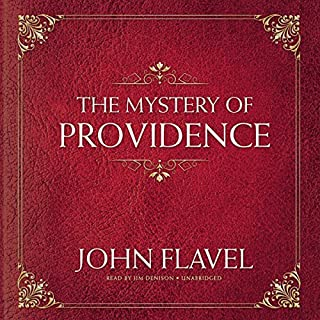 The Mystery of Providence audiobook cover art