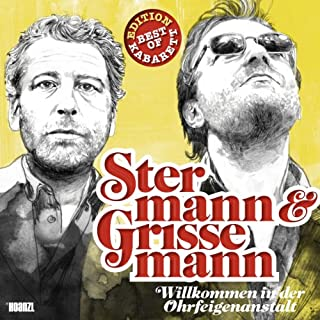 Stermann & Grissemann - Willkommen in der Ohrfeigenanstalt Titelbild