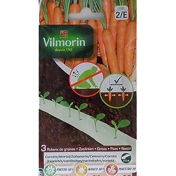 3 Cintas biodegradables Vilmorin 525 semillas de ZANAHORIA ...