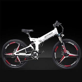 Amazon.es: bateria bicicleta 48v